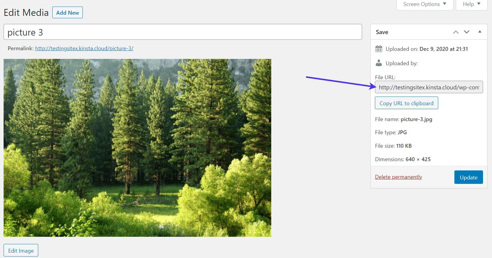 Uploaded media have unique file URLs.