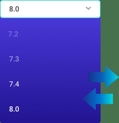 DevKinsta PHP Versions