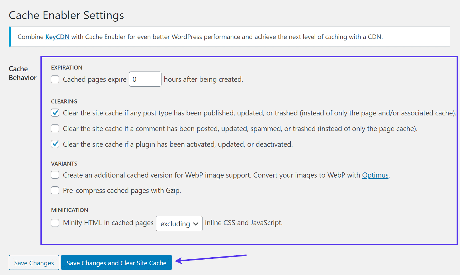 Cache Enable Settings panel