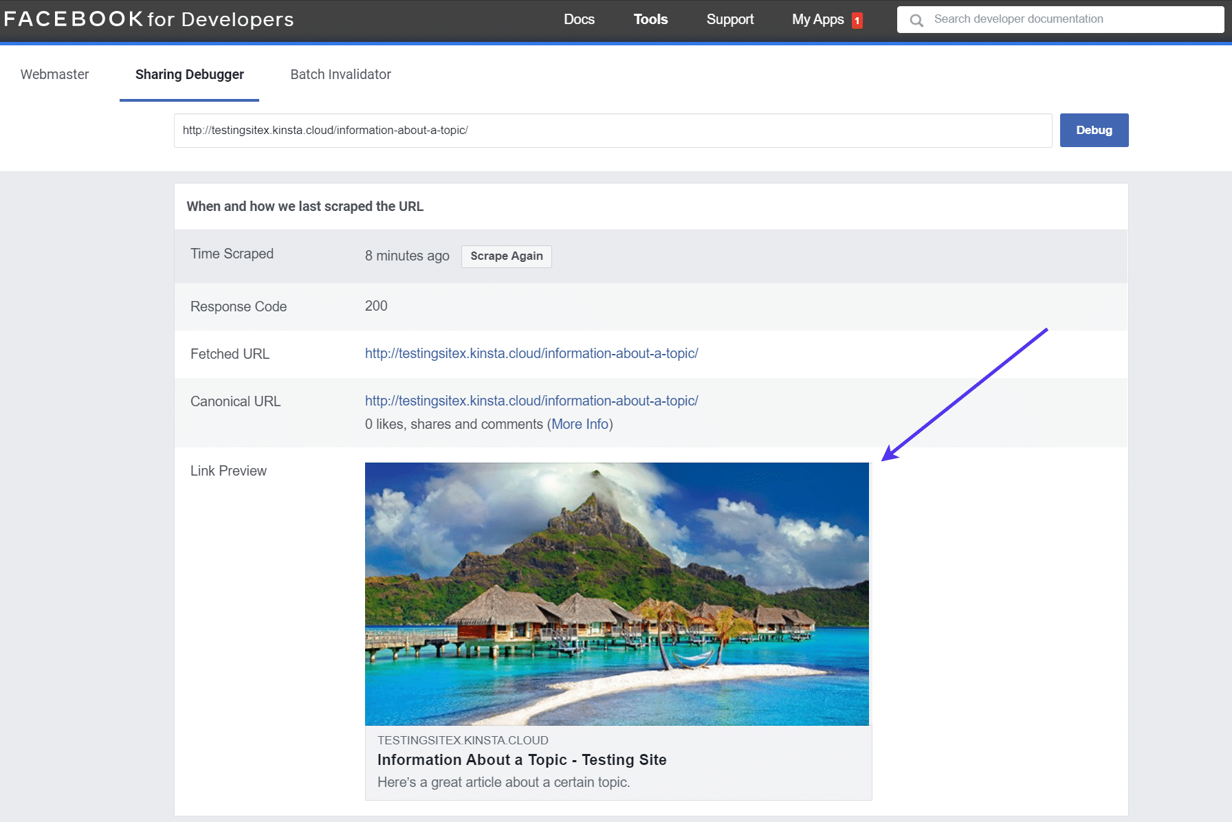 Checking the 'Link Preview' of a URL on Facebook