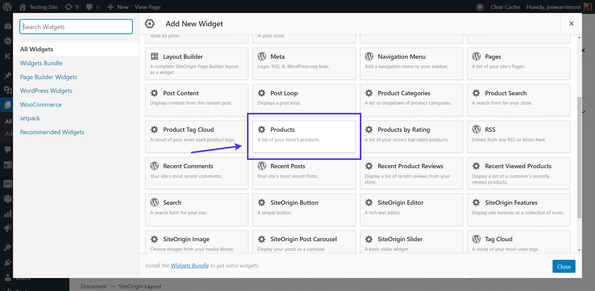 Choose the 'Products' widget
