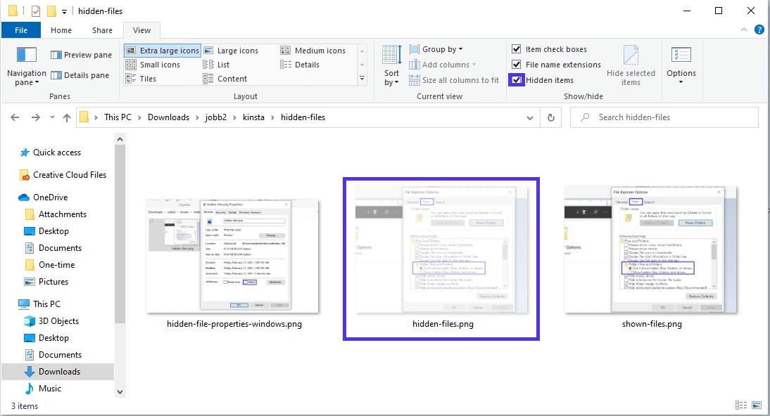 Visualizzare i file nascosti nel File Explorer