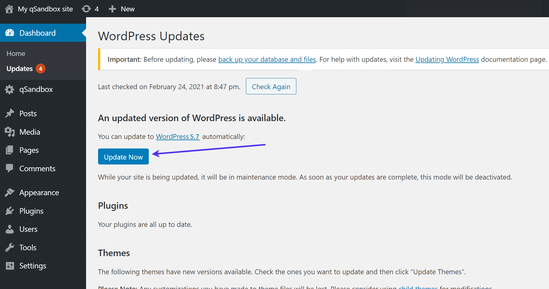 """Click the """"Update Now"""" button."""