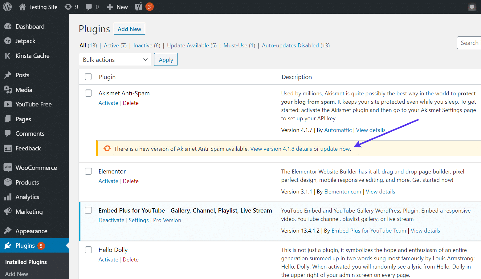 """Click the """"update now"""" link for a plugin."""