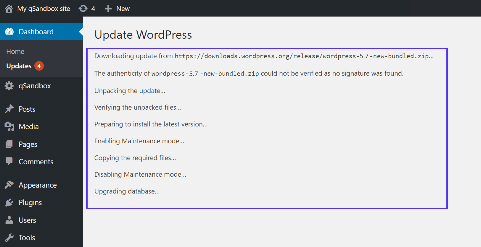 The info shown during a WordPress update.