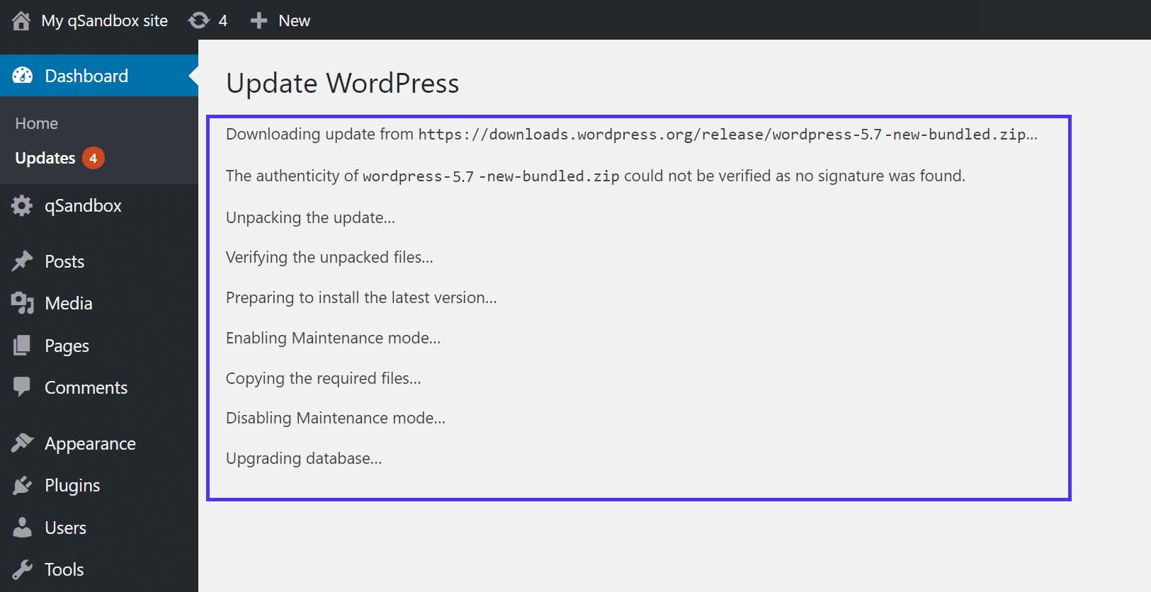As informações mostradas durante uma atualização do WordPress