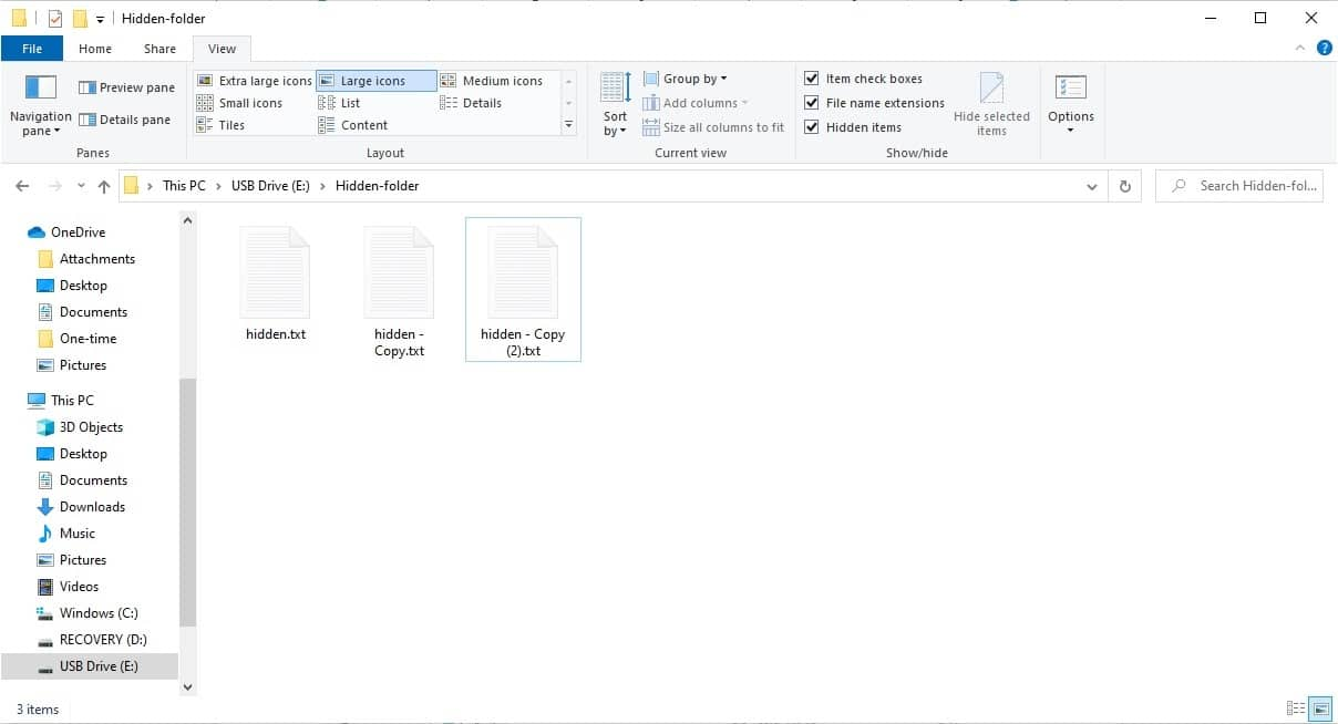 USB drive folder with hidden files visible.