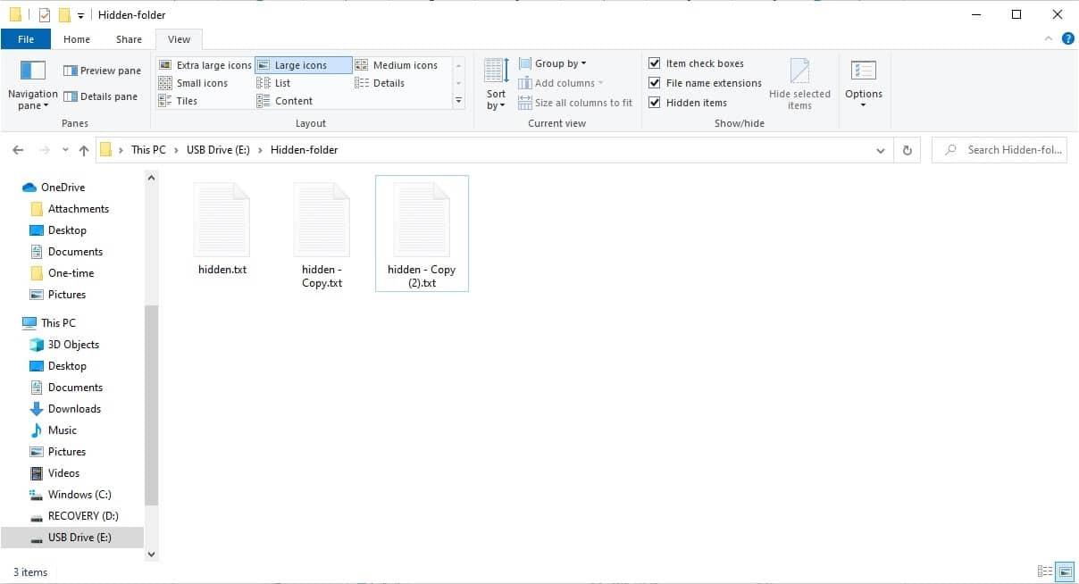 Cartella dell'unità USB con file nascosti visibili