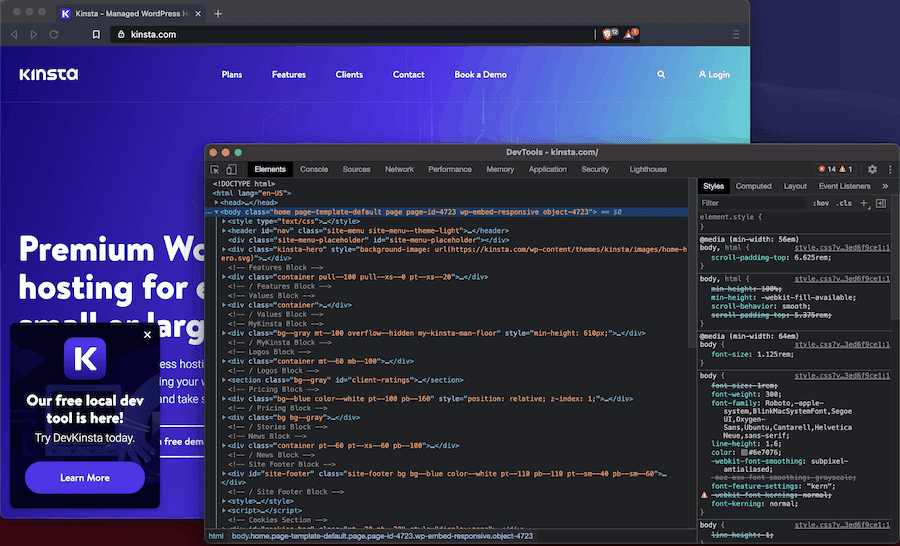 The DevTools found in the Brave Browser.
