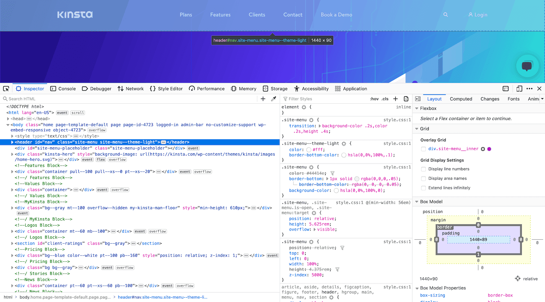 Firefox's developer tools.