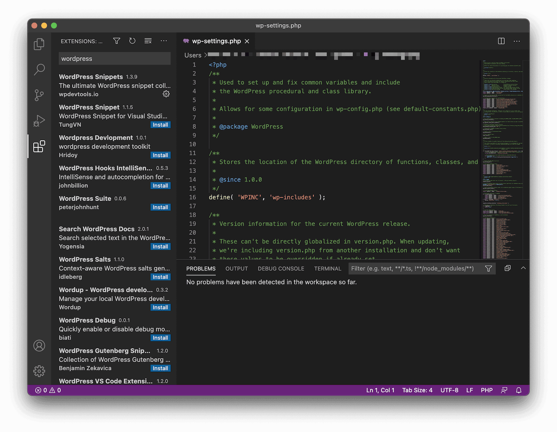 The Visual Studio Code Editor.