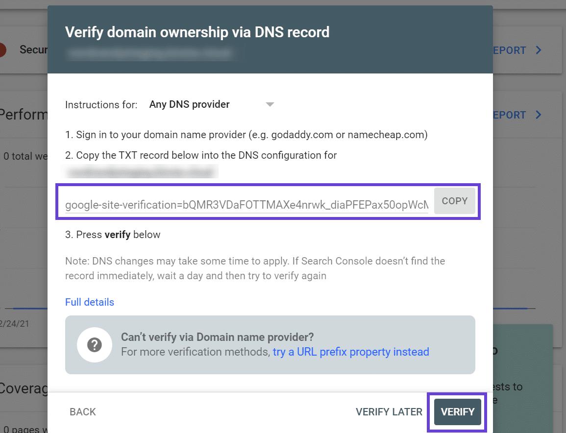 Modal de Verificação de DNS do Google