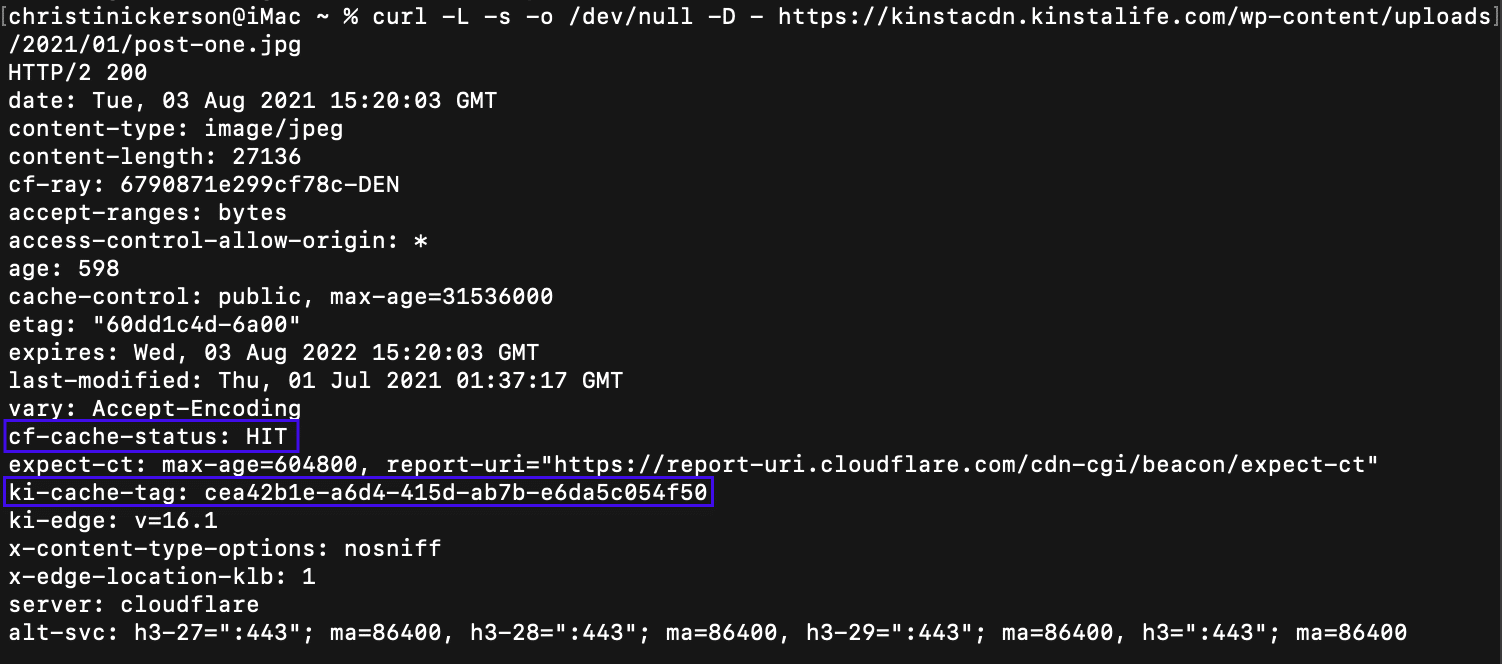 Check for cf-cache-status: HIT and ki-cache-tag present in response to curl to a static asset in Terminal.