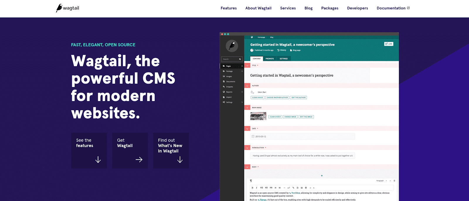 Screenshot of the Wagtail CMS homepage.
